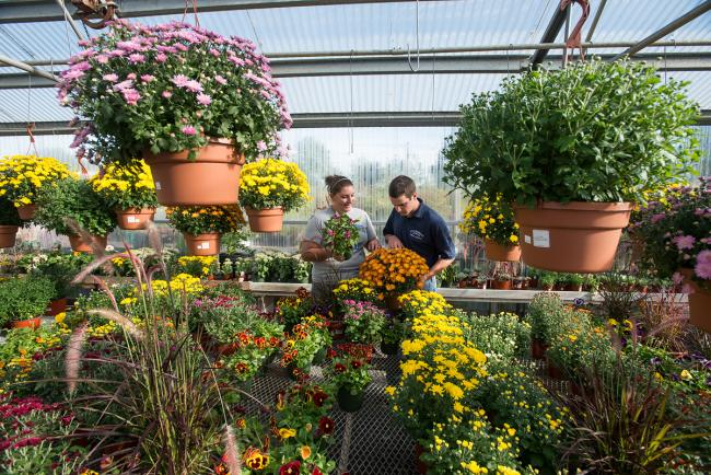 Horticulture what are the main subjects in school